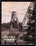 A Valley Reborn cover.jpg